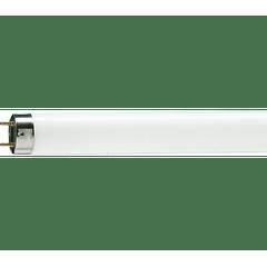 Lampada-Fluor-16W-Confort---Philips