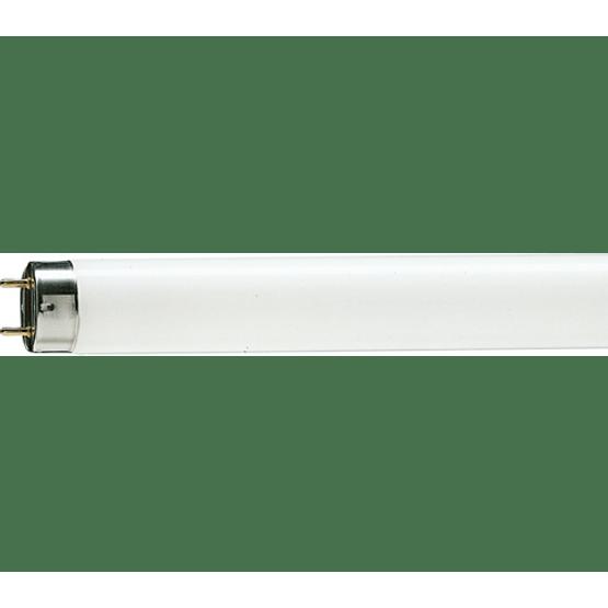 Lampada-Fluor-32W-Confort---Philips